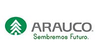 arauco_const