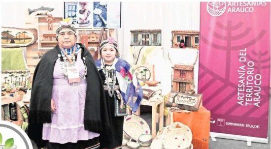 Proyecto promoverá que artesanías de Arauco conquisten el mercado mundial